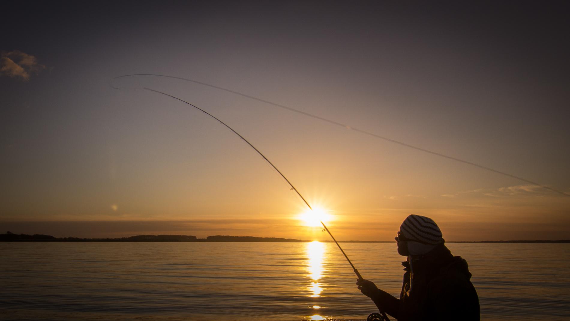 Welche Fliegenschnur für Anfänger? Fliegenfischen Lernen